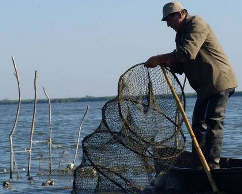 Pensiunea Agroturistica Oprisan 3✿, Crisan, Delta Dunarii